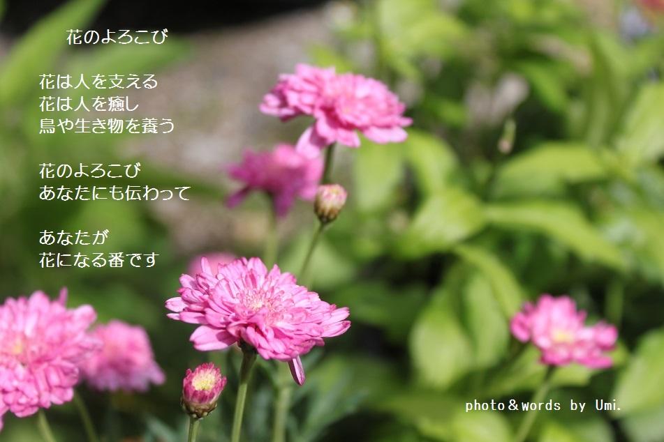 f0351844_09233188.jpg