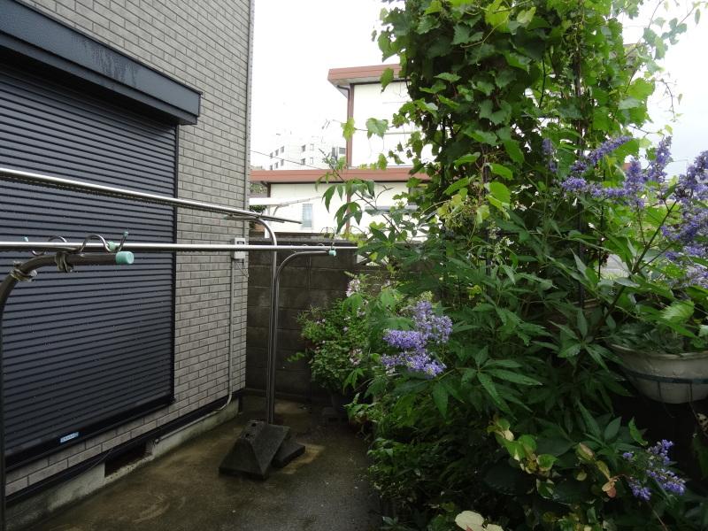 台風8号は少し おとなしくなったようだ_c0108460_15021541.jpg
