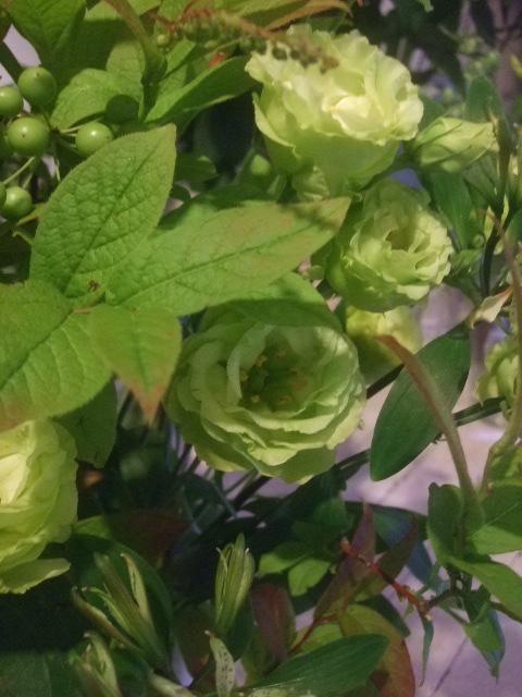 オークリーフ花の教室(トルコキキョウとひまわり)_f0049672_18101560.jpg