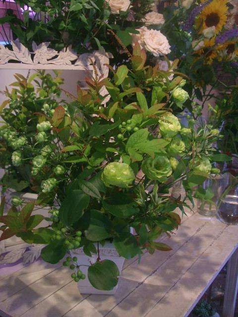 オークリーフ花の教室(トルコキキョウとひまわり)_f0049672_1812865.jpg