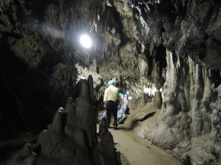 地域の魅力満載!「安家洞と安家の自然観賞会」報告_f0325488_22444426.jpg