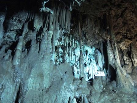 地域の魅力満載!「安家洞と安家の自然観賞会」報告_f0325488_22461455.jpg