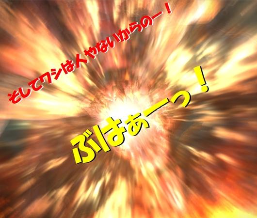 b0296791_19304678.jpg