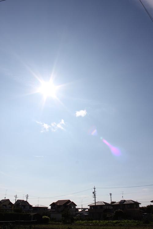 """☆ 台風一過:*.;\"""".*・;・^;・:\(*^▽^*)/:・;^・;・*.\"""";.*: ワーイ♪ ☆_d0038712_16291189.jpg"""