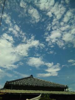 blog:台風一過〜夏の神戸・徳島・北海道〜_a0103940_2238239.jpg