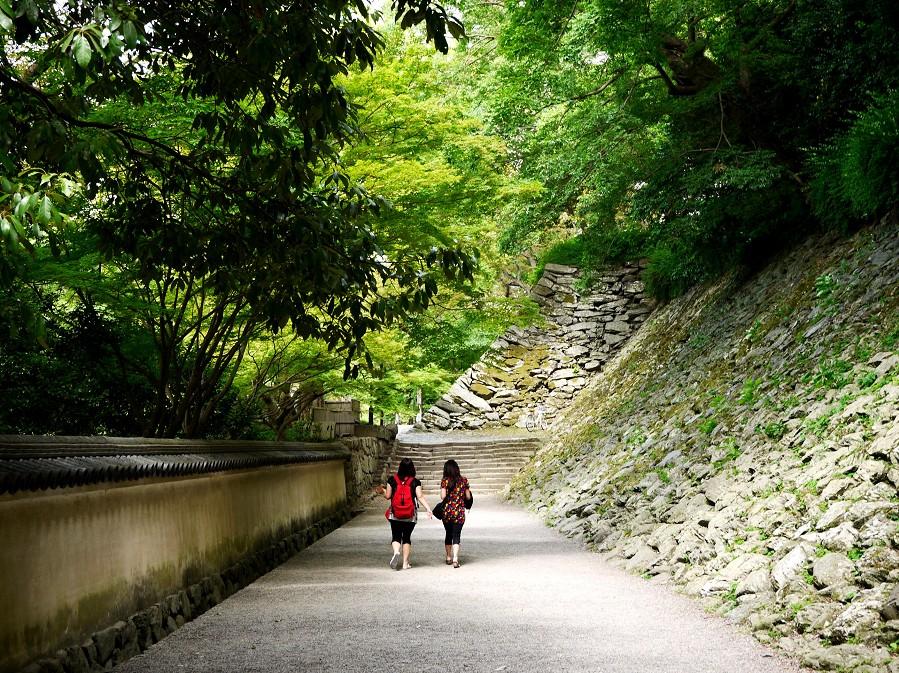 和歌山城公園にて_b0093754_1656398.jpg