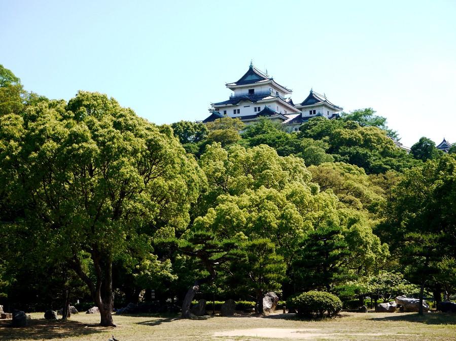 和歌山城公園にて_b0093754_16574479.jpg