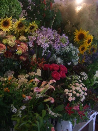 オークリーフ(7月の花たち)_f0049672_14522468.jpg