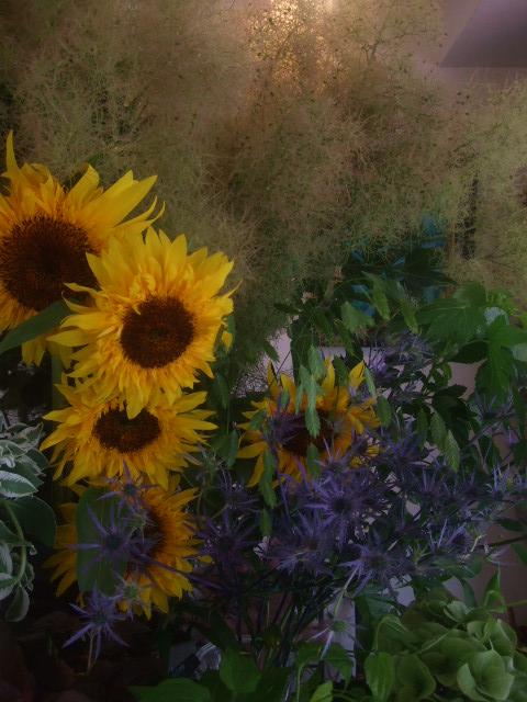オークリーフ(7月の花たち)_f0049672_14534588.jpg