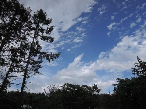 長坂町H野さん邸の現場より 9_a0211886_23352131.jpg