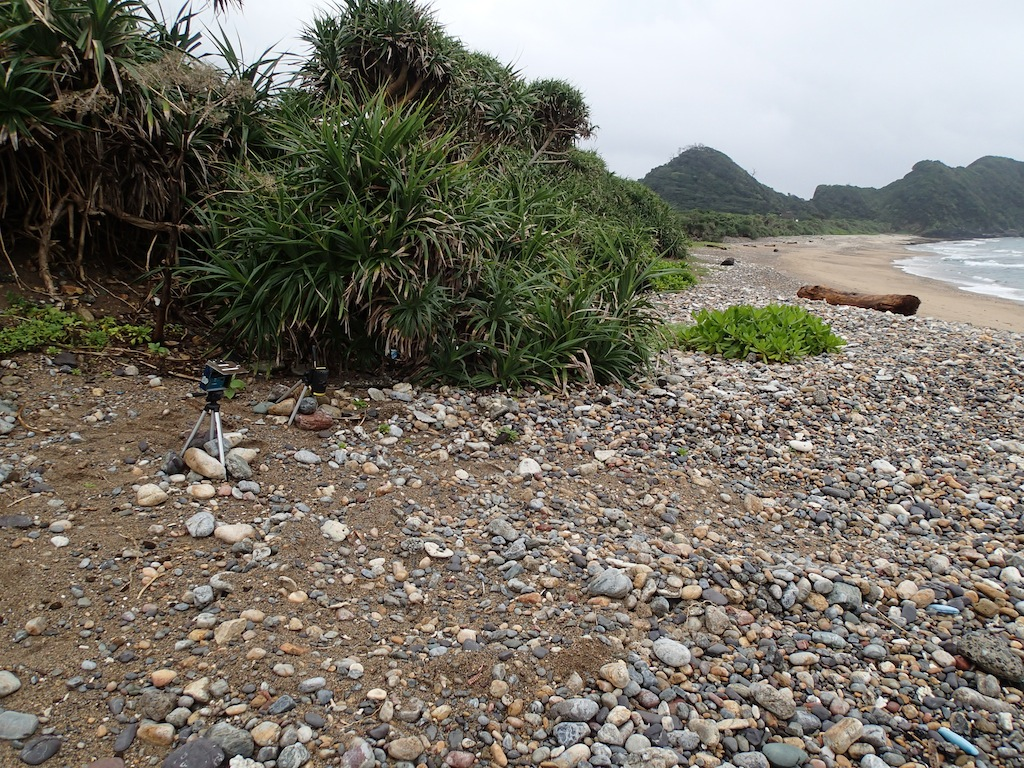 7/11 大浜・ヒエン浜_a0010095_17262667.jpg
