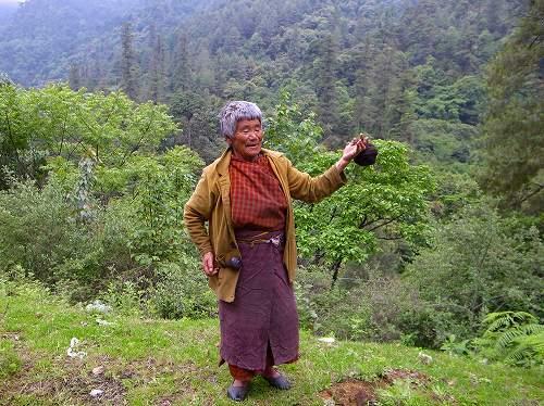ブータン王国への旅  7_e0221697_23591455.jpg