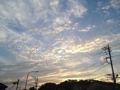 夏がきた_e0239908_2025264.jpg