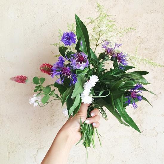 7月の庭花_f0032814_223710100.jpg
