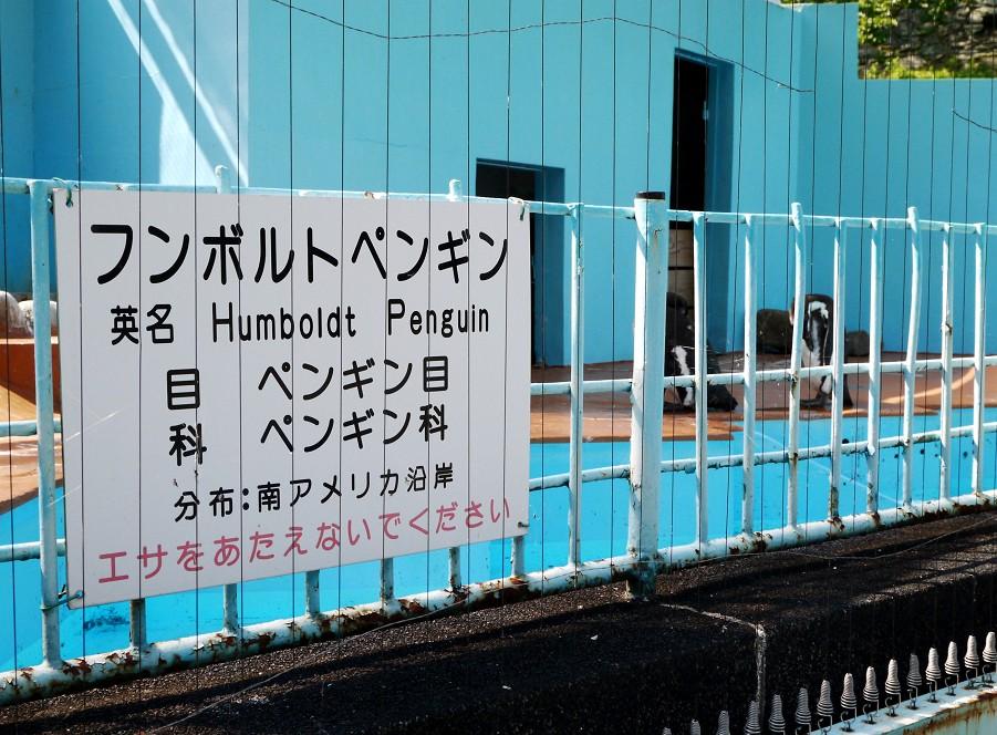 和歌山公園動物園_b0093754_212920.jpg