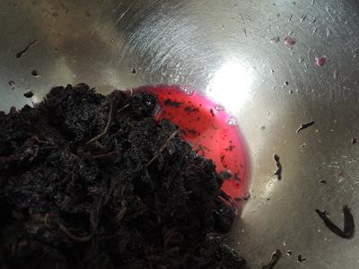 梅干しの紫蘇漬け_b0252363_1328674.jpg