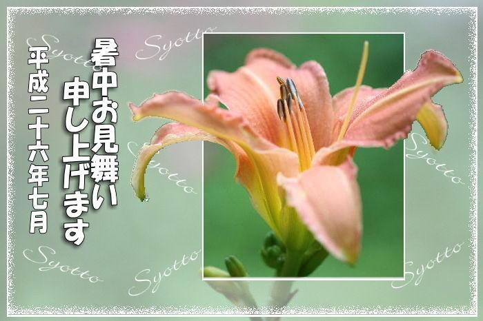 f0164592_2242720.jpg