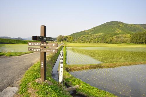 福島地区のサイン_a0286510_18261626.jpg