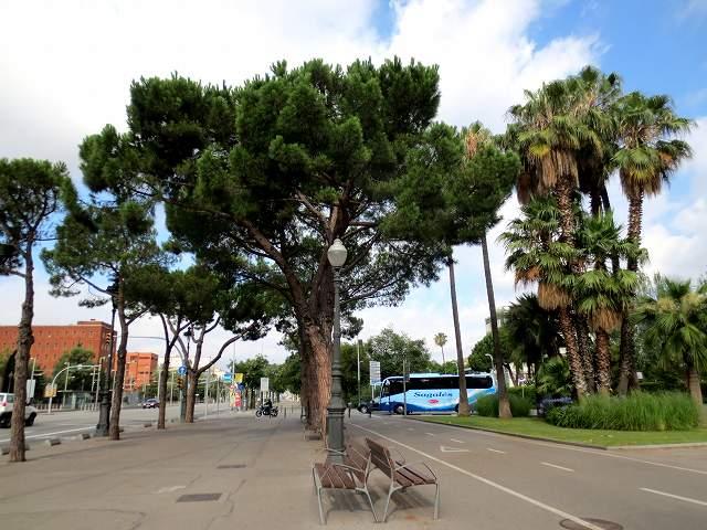 セルバンテス公園へ散歩に_b0064411_06203059.jpg