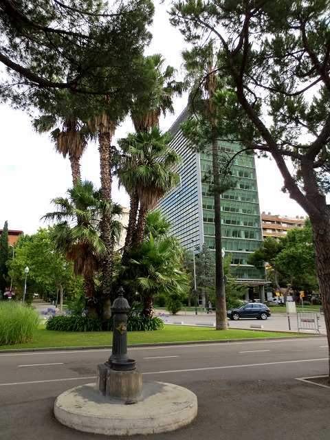 セルバンテス公園へ散歩に_b0064411_06203063.jpg