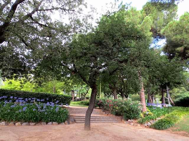 セルバンテス公園へ散歩に_b0064411_06275207.jpg