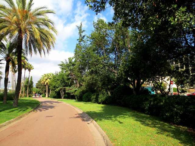 セルバンテス公園へ散歩に_b0064411_06311368.jpg