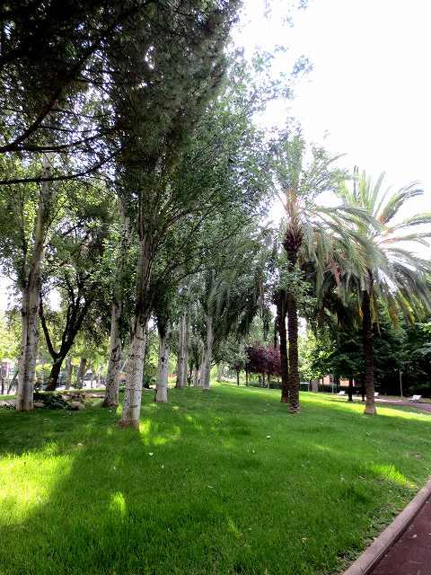 セルバンテス公園へ散歩に_b0064411_06414638.jpg