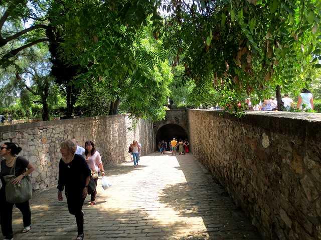 聖マドローナのお祭り_b0064411_22593176.jpg
