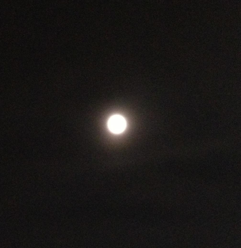 お山とマンダラと天の川銀河と満月と~欲張りWS_a0258233_16163016.jpg
