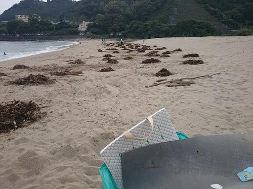 【中山間支援事業】大泊海水浴場の清掃(日曜日もやります)_c0010936_0274274.jpg