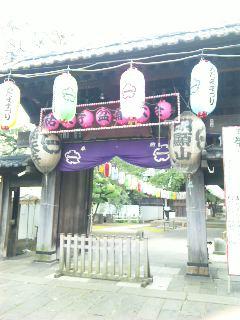 blog:青鬼クラブ_a0103940_21115071.jpg