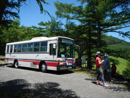 夏臨時定期バス_e0120896_6301142.jpg