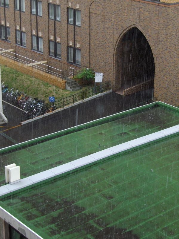局地的に豪雨が通り過ぎる札幌_c0025115_19362386.jpg