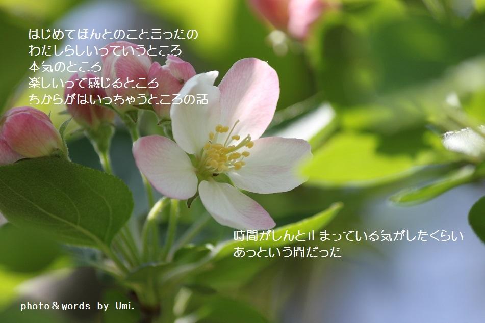 f0351844_05565813.jpg
