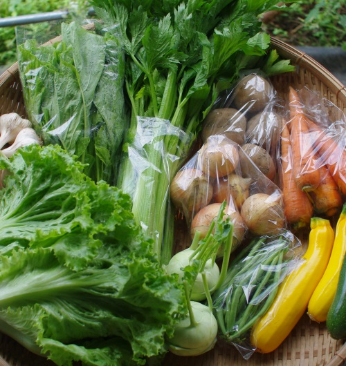 今週の野菜セット(7/15~7/19着)_c0110869_12422044.jpg