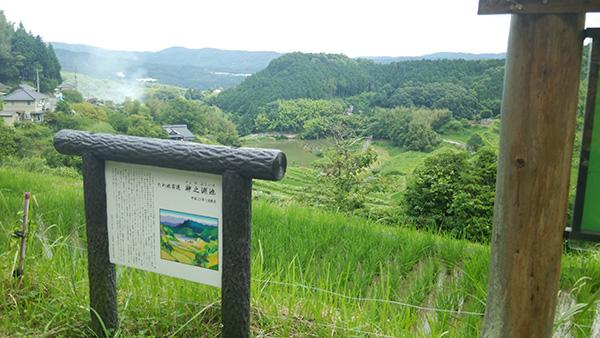 ボンネビルで軽く棚田を見に(岡山発)_e0173183_1747594.jpg