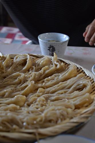 蕎麦、そば、soba!_c0124100_2295562.jpg