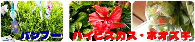 f0203094_1624215.jpg