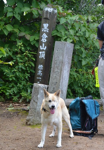 鍋倉山_c0124100_222559.jpg