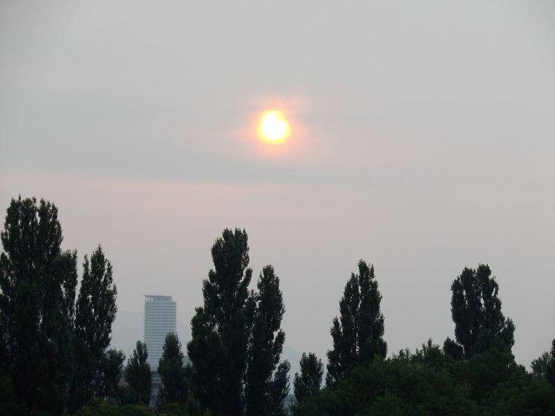 クレヨンの太陽_c0025115_1934711.jpg