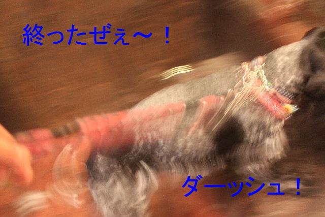 b0130018_056670.jpg