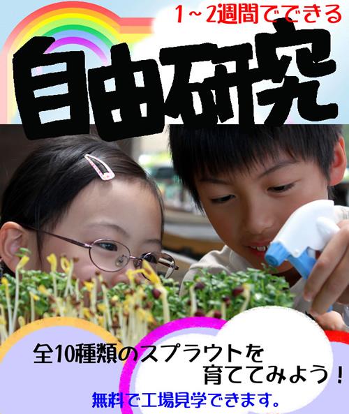 夏休みの自由研究_d0063218_13524916.jpg