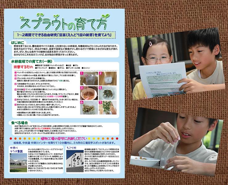 夏休みの自由研究_d0063218_14224282.jpg