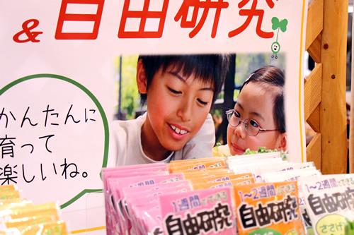 夏休みの自由研究_d0063218_1435382.jpg