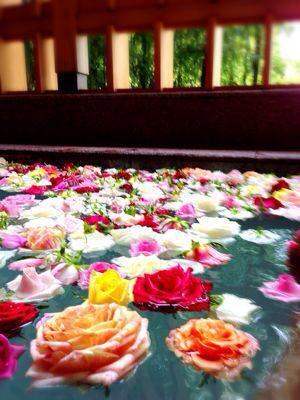 有馬の薔薇風呂とBRのトリートメントで、幸せっ。_f0215324_23363027.jpg