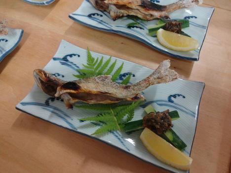 天然岩魚塩焼き食べに来ませんか?_f0219043_553326.jpg