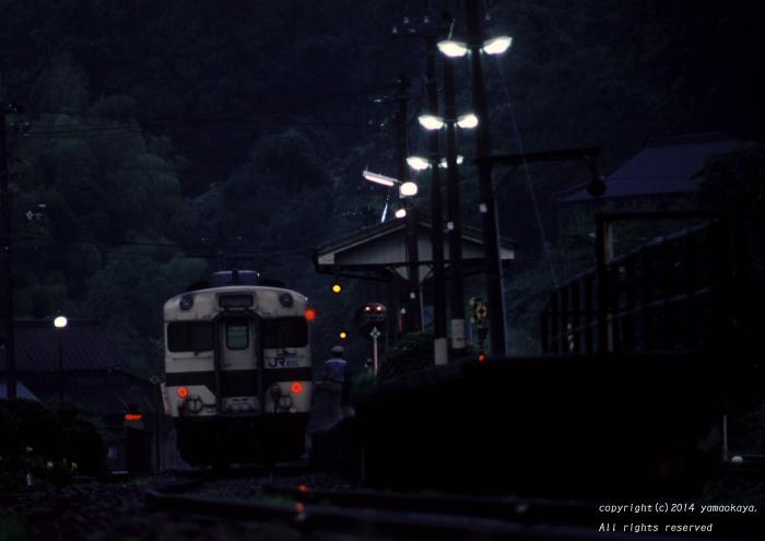 大雨の夕刻に _d0309612_22383095.jpg