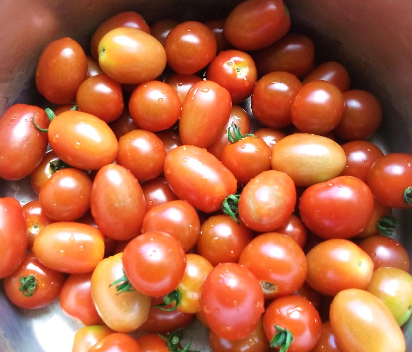 夏野菜は最盛期..._b0137932_15421928.jpg