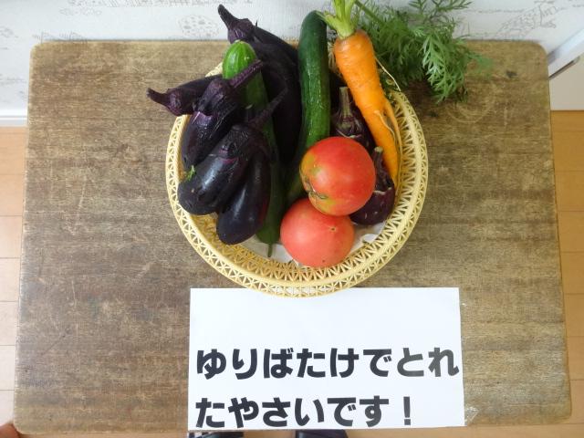 ゆり組 保育参観_d0166047_11491753.jpg
