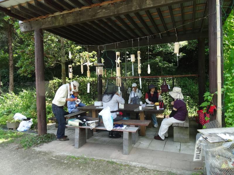 トンボソウとコクランに出会えました in うみべの森を育てる会植物観察     by     (TATE-misaki)_c0108460_17342396.jpg